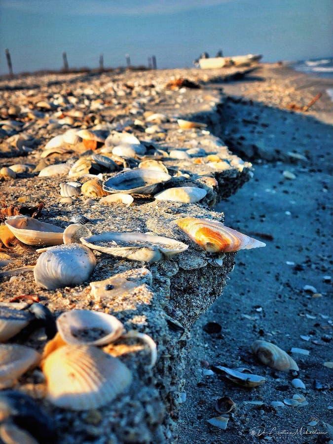 Whater di musica del sole di Mar Nero fotografia stock