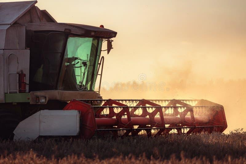 Whe mûr d'or de recolte mécanique d'agriculture de moissonneuse de cartel photos stock