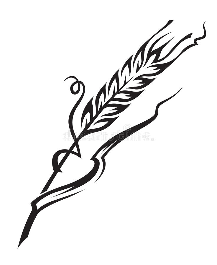 Free Wheat Stock Images - 16330794