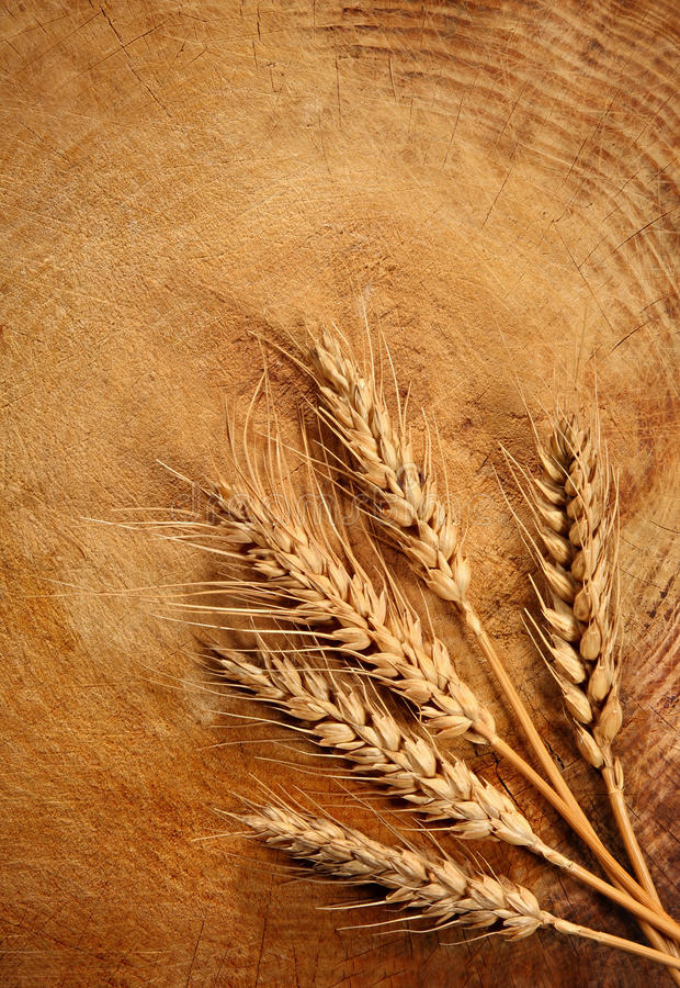 Free Wheat Royalty Free Stock Images - 17654429