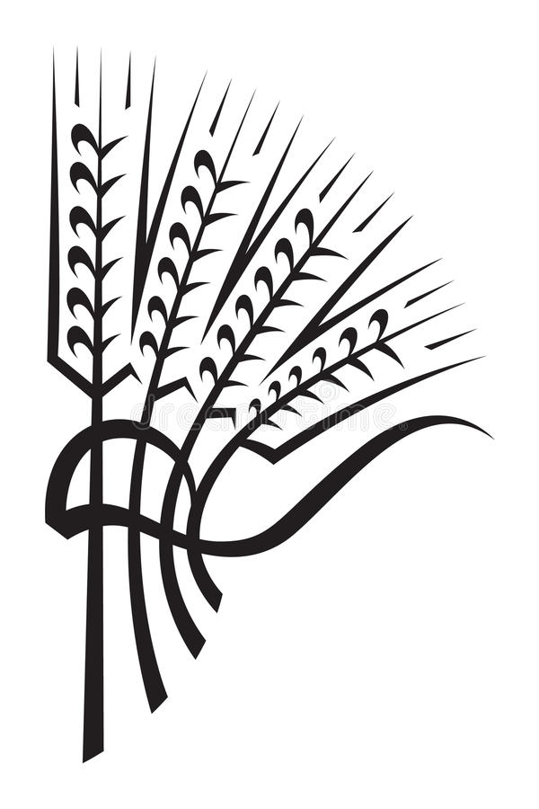 Download Wheat stock vector. Image of icon, graphic, harvest, field - 18461138