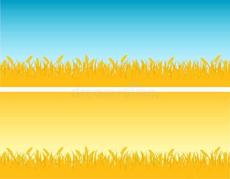 Wheat royalty free illustration