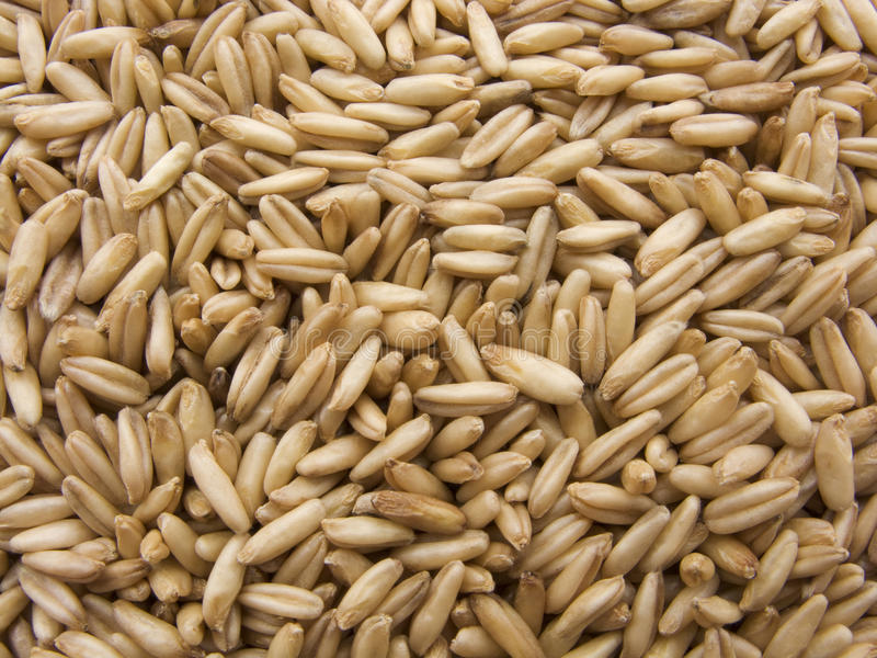 Download Wheat stock image. Image of texture, background, meal - 20405501