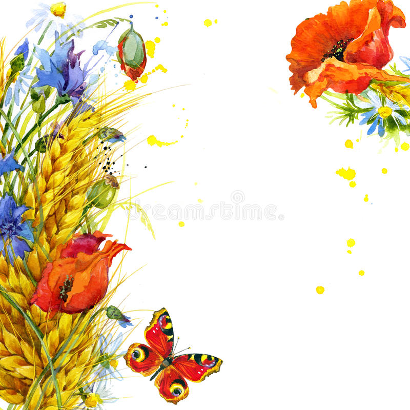 Free Wheat And Wildflower. Watercolor Illustration Stock Images - 53708454