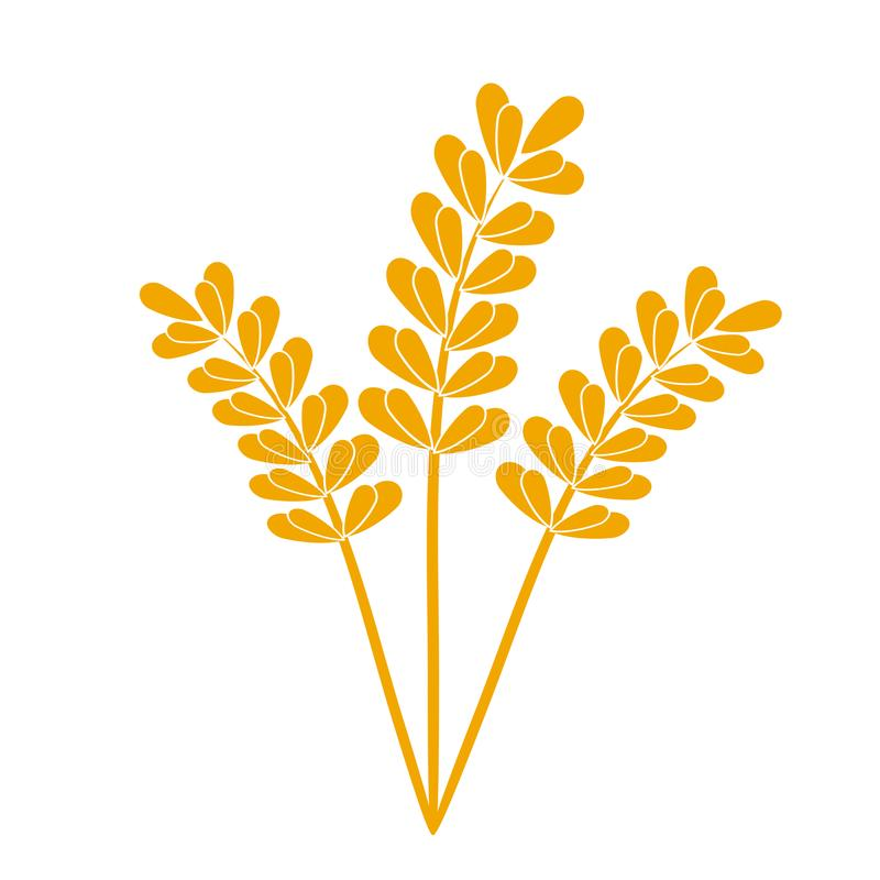 Wheat or barley ears. Harvest wheat grain, growth rice stalk and whole bread grains or field cereal nutritious rye grained. Agriculture products ear symbol stock illustration