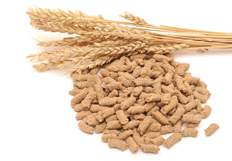 Wheat Bran With Ear Stock Image