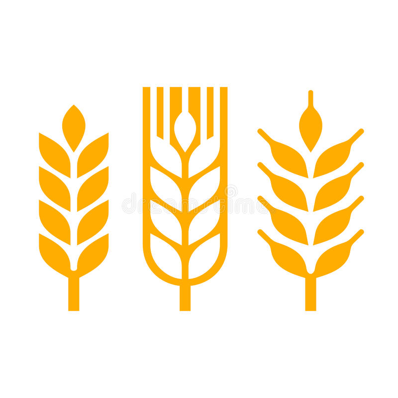 Wheat Ear Spica Icon Set. Vector vector illustration
