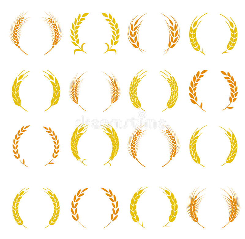 Wheat ear symbols for logo design. Agriculture grain, organic plant, bread food. Design elements for bread packaging or beer label. Set of silhouette circular stock illustration