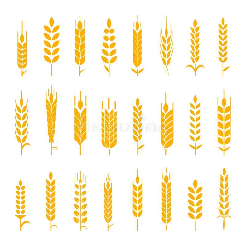 Wheat Ear Symbols For Logo Design Stock Vector Illustration Of