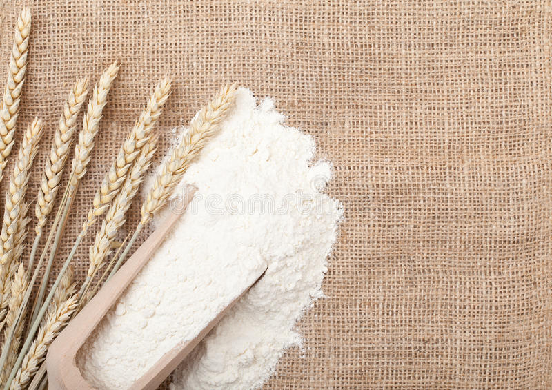 Download Wheat ears and flour stock photo. Image of scoop, food - 21635138