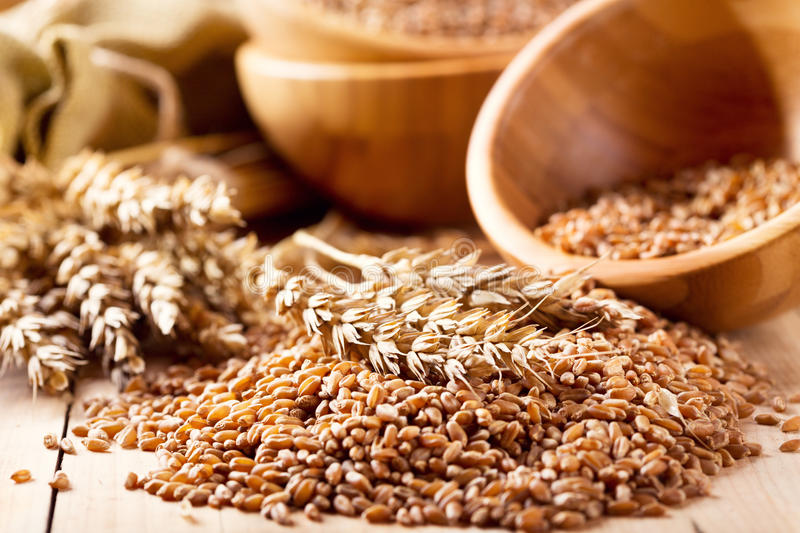 Wheat ears and grains royalty free stock image