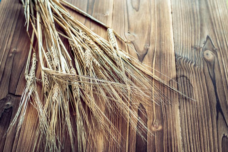 Wheat ears on rustic wooden background royalty free stock photo