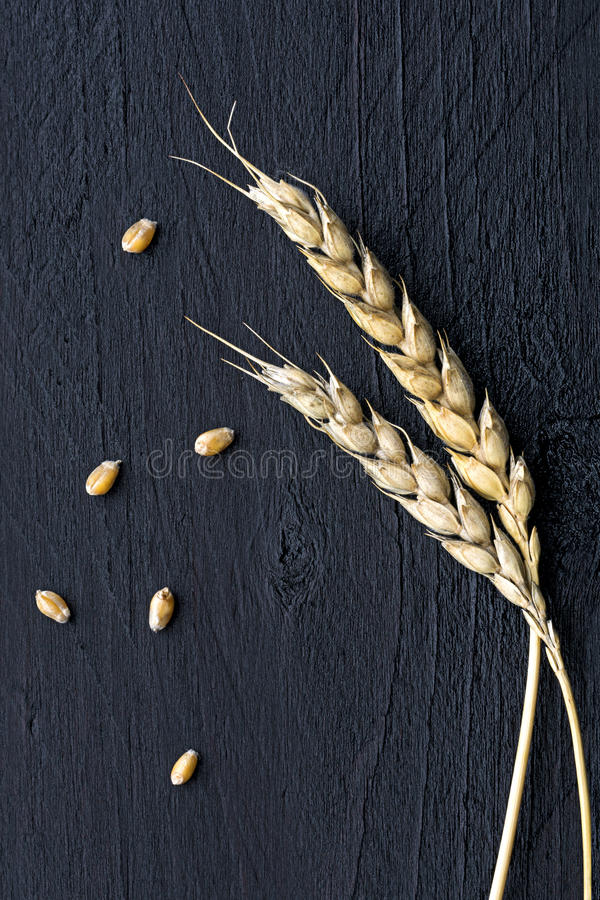 Wheat ears and seed on black wood stock images