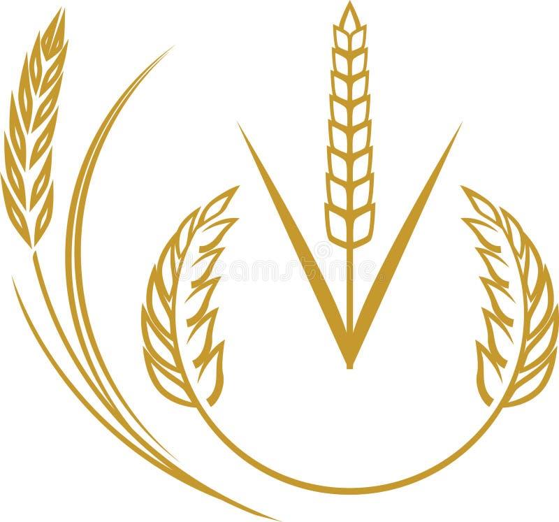 Free Wheat Elements Royalty Free Stock Image - 31415916