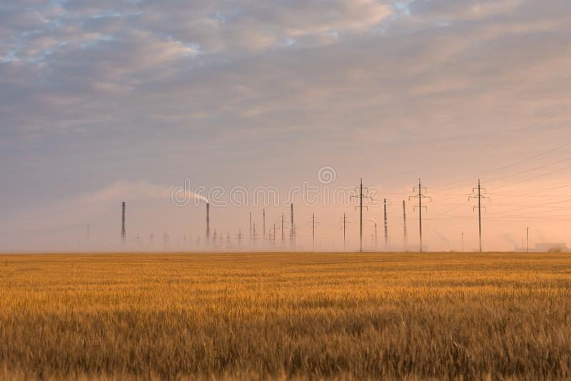 Wheat field on the background of the industrial city in the rays of the rising sun. Wheat field, fog & industrial city in the rays of the rising sun royalty free stock photos