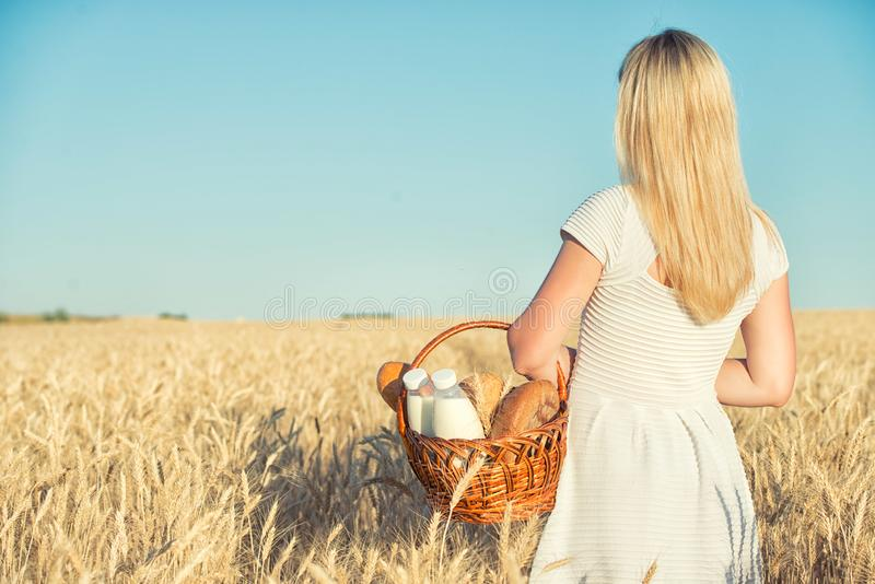 A woman is holding a basket with bread and milk on the background of a wheat field. royalty free stock photo