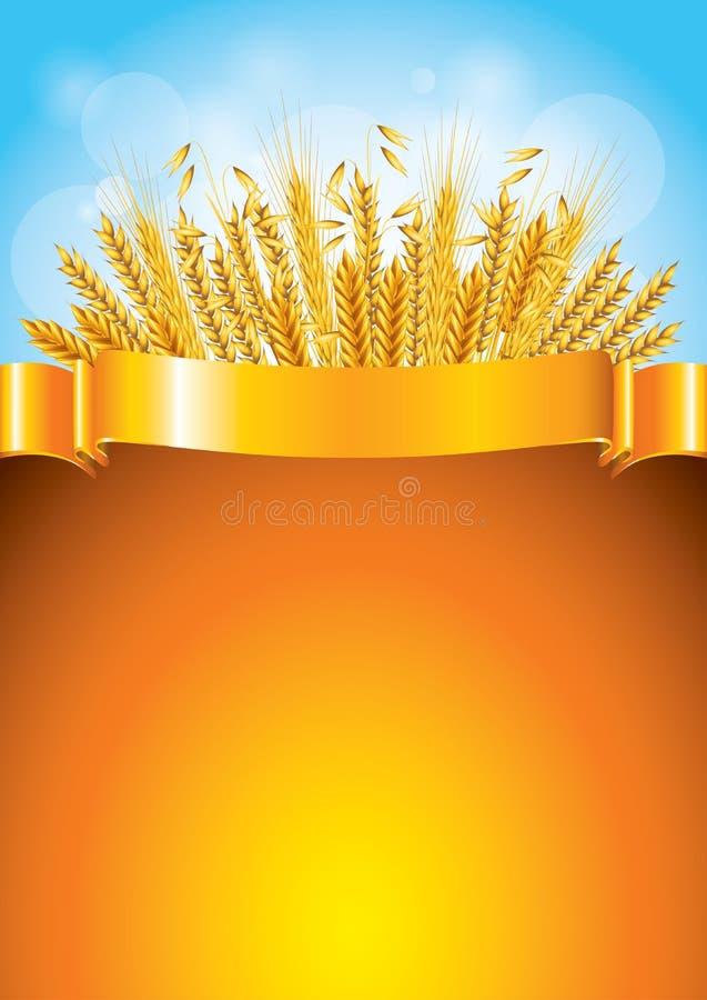 Wheat on golden ribbon background vector illustration