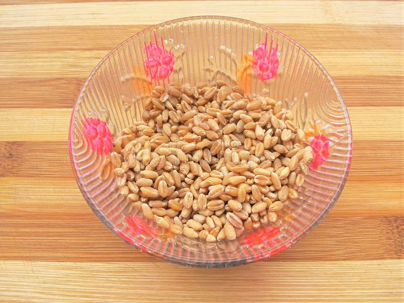 Wheat grain in bowl. Close up of wheat grain in bowl royalty free stock images