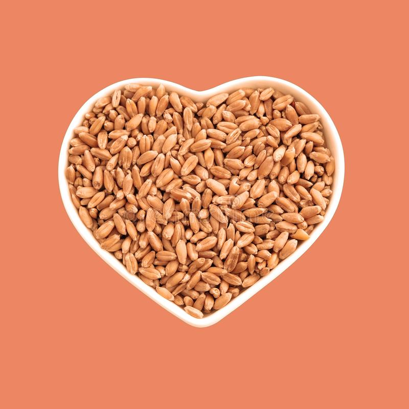 Wheat grains in a plate in the shape of a heart. Favorite food. Agriculture and love. In isolation. Beige and orange background. Wheat grains in a plate in the royalty free stock photos