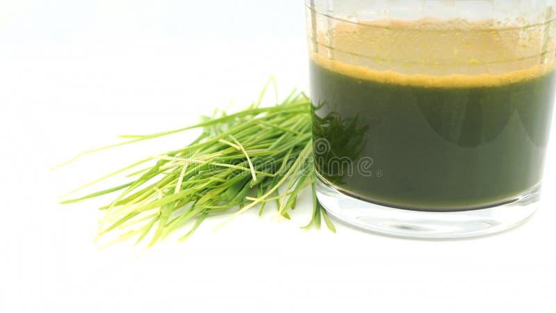 Wheat grass juice stock image