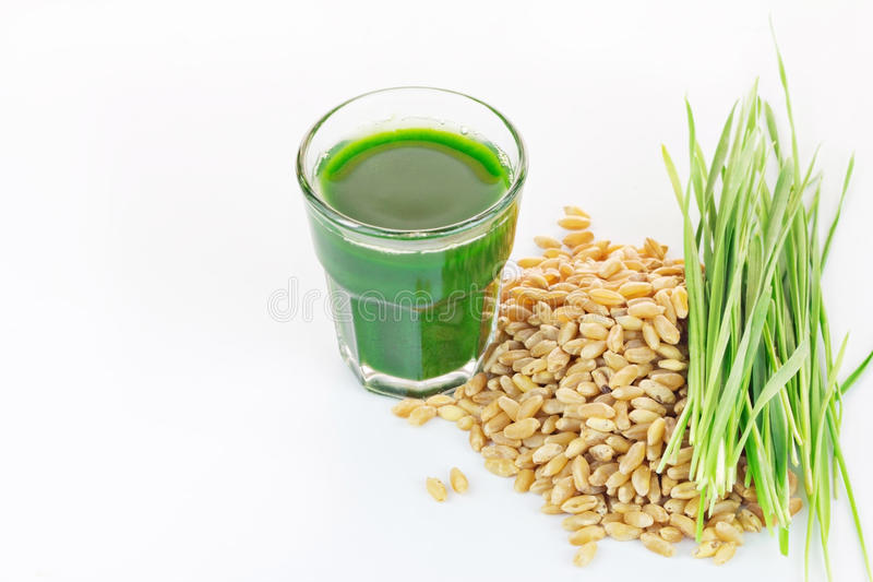 Wheat grass juice on white background. Wheat grass juice with fresh wheat grass and wheat on white background stock photos