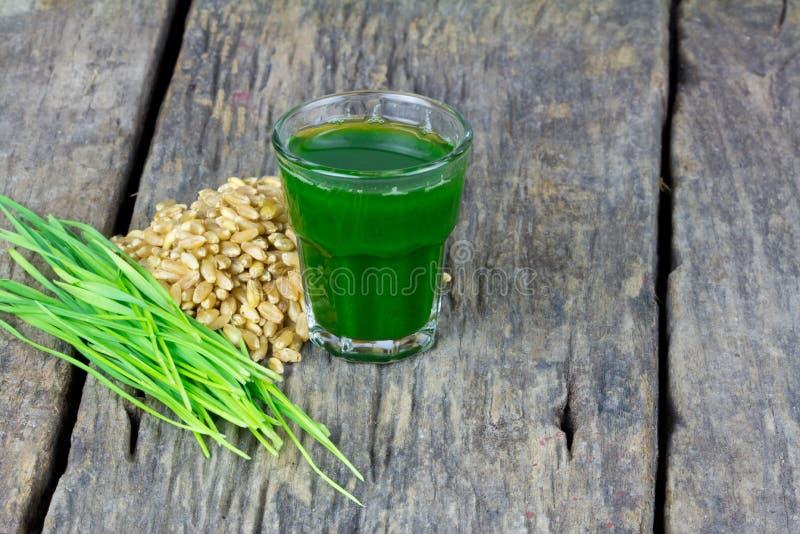 Wheat grass juice on wood background. Wheat grass juice with fresh wheat grass and wheat on wood background royalty free stock photo