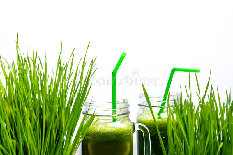 Wheat grass and smoothies isolated on white. Background stock image