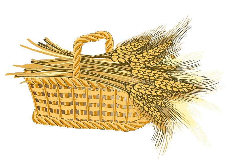 Wheat harvest in basket. Detailed illustration of ripe ears for designs vector illustration