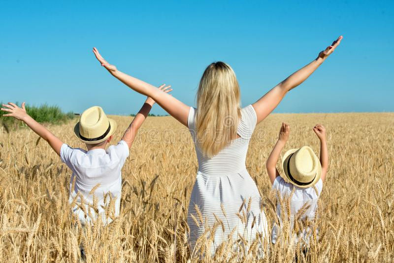 Mother and two sons stand looking at the wheat harvest. royalty free stock photos