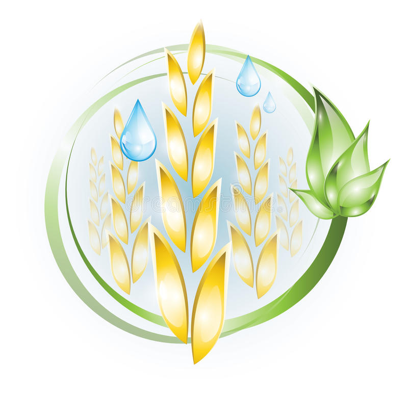 Free Wheat Icon Royalty Free Stock Images - 32052979