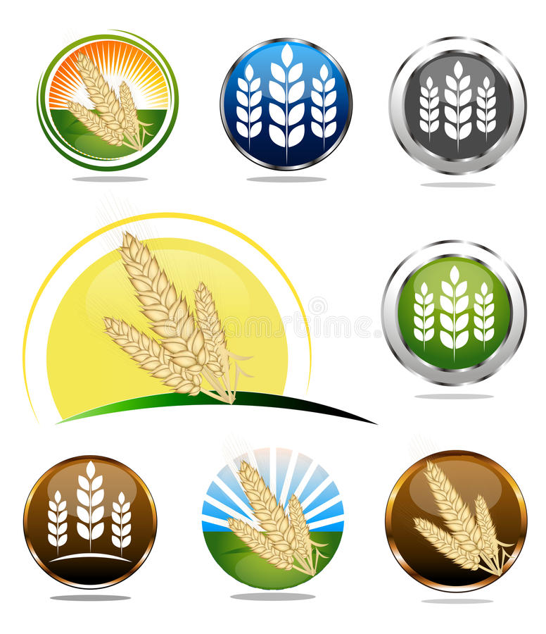 Wheat icons. Food labels collection for whole grain cereal products. Various bright colors. Can be used as a web buttons, on a packaging etc stock illustration