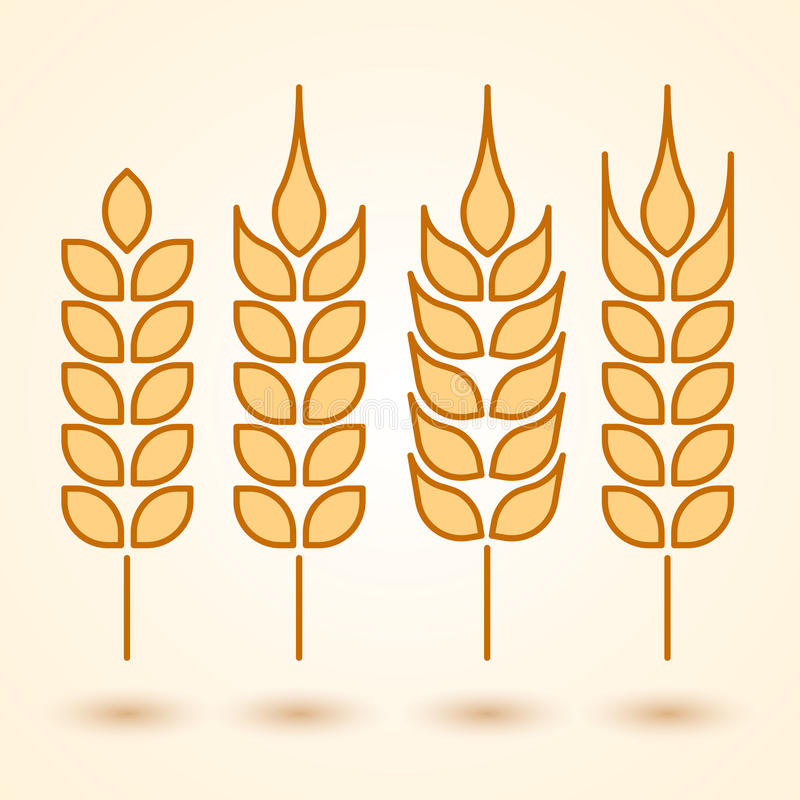 Download Wheat icons set stock vector. Image of white, corn, crop - 41947599