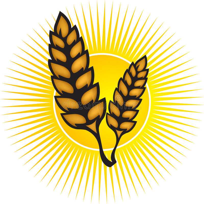 Download Wheat logo stock vector. Illustration of illustration - 23588862