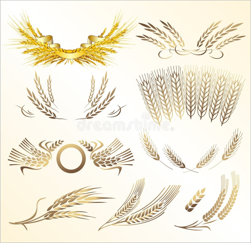 Wheat mix vector illustration