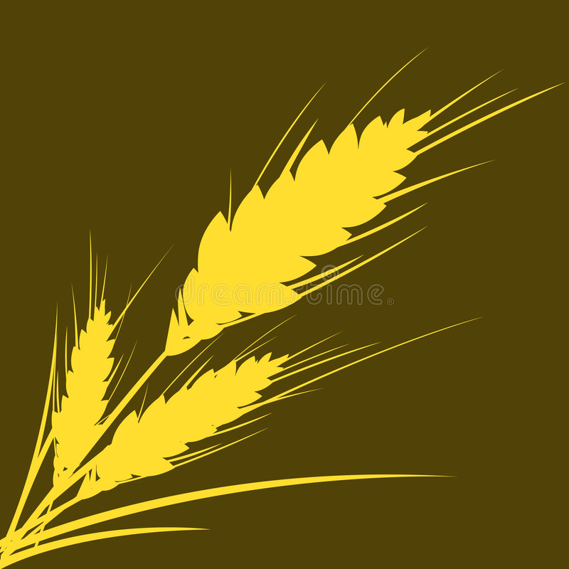 Wheat (with PATH) vector illustration