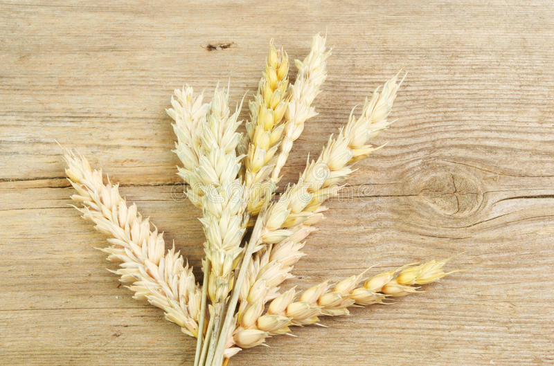 Wheat Sheaf On Wood Stock Images