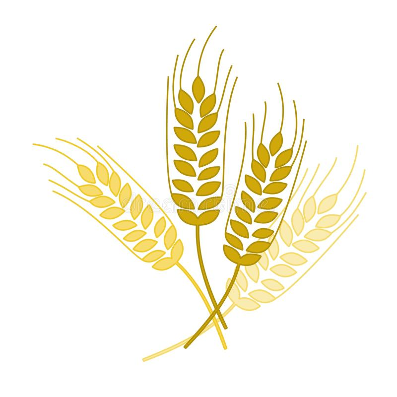Free Wheat Spike Stock Images - 22196114