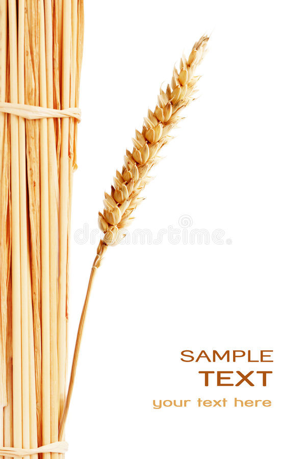 Wheat Stack Stock Photo