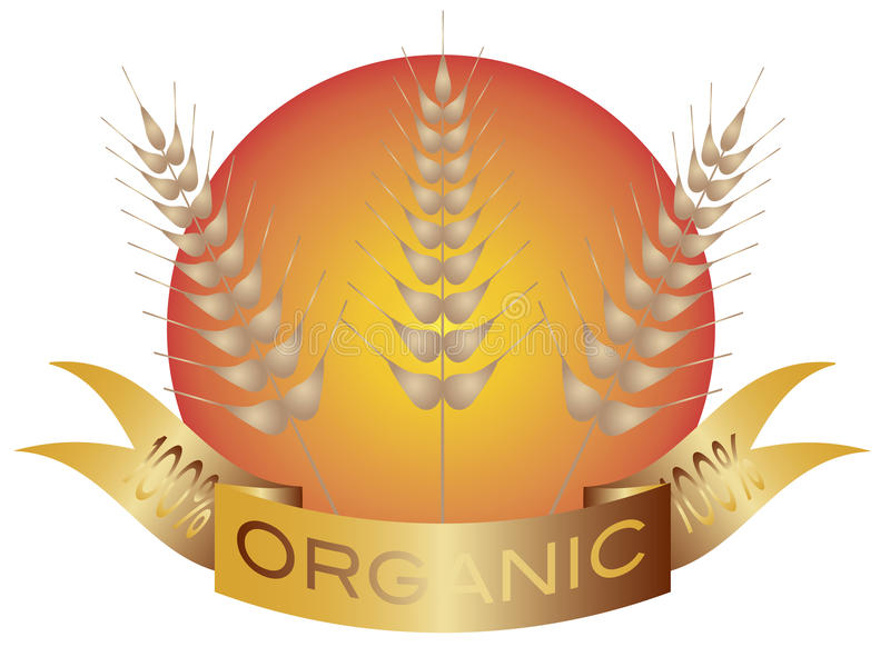 Wheat Stalk with Banner and Sun vector illustration