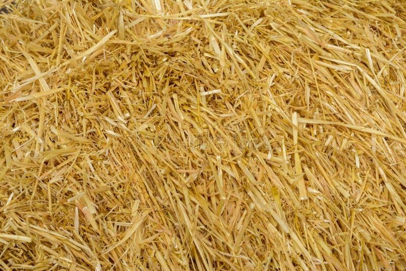 Wheat straws background stock photos