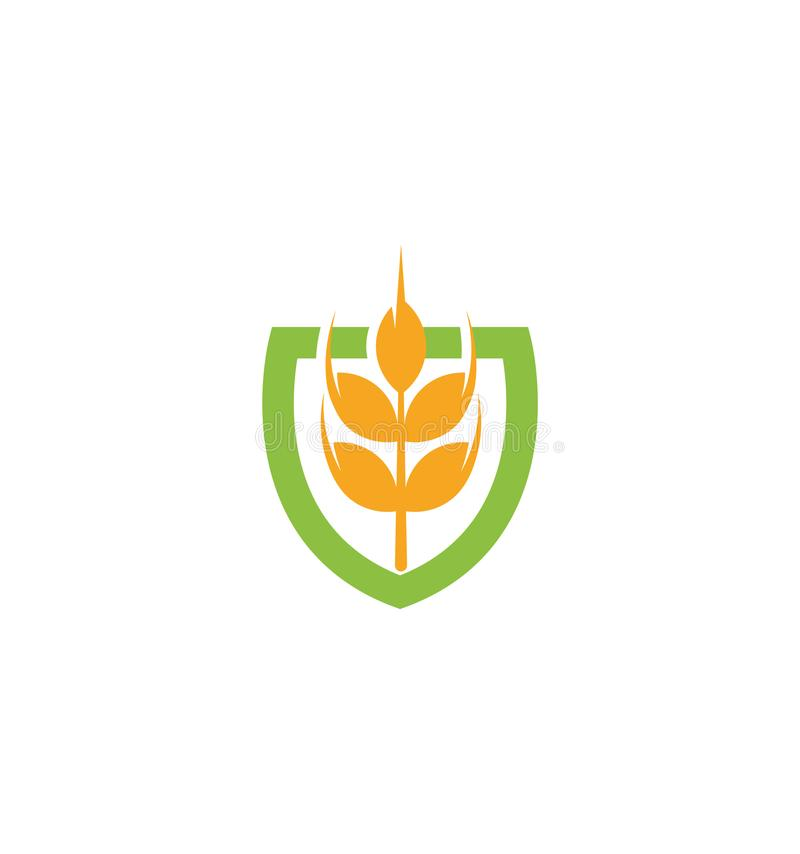 Wheat vector grain icon Isolated abstract orange color wheat ear hearldic logo. Nature element logotype. Agricultural stock illustration