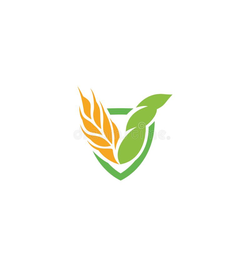Wheat vector grain icon Isolated abstract orange color wheat ear hearldic logo. Nature element logotype. Agricultural vector illustration