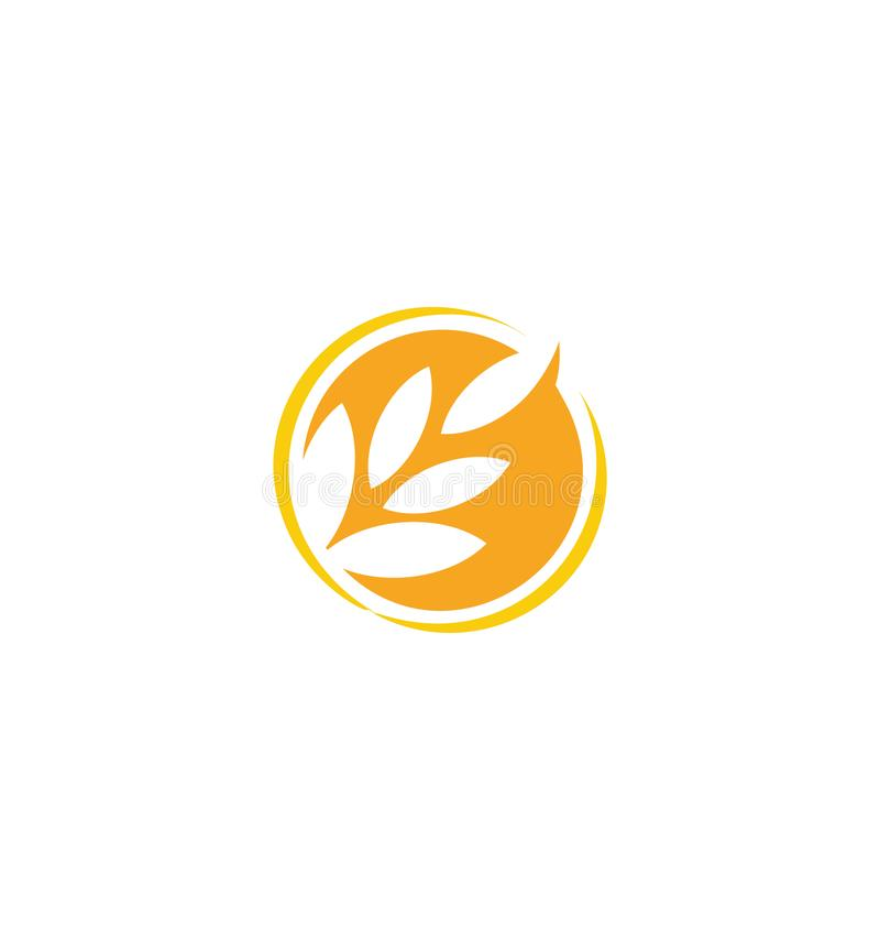 Wheat vector grain icon Isolated abstract orange color wheat ear round logo. Nature element logotype. Agricultural royalty free illustration