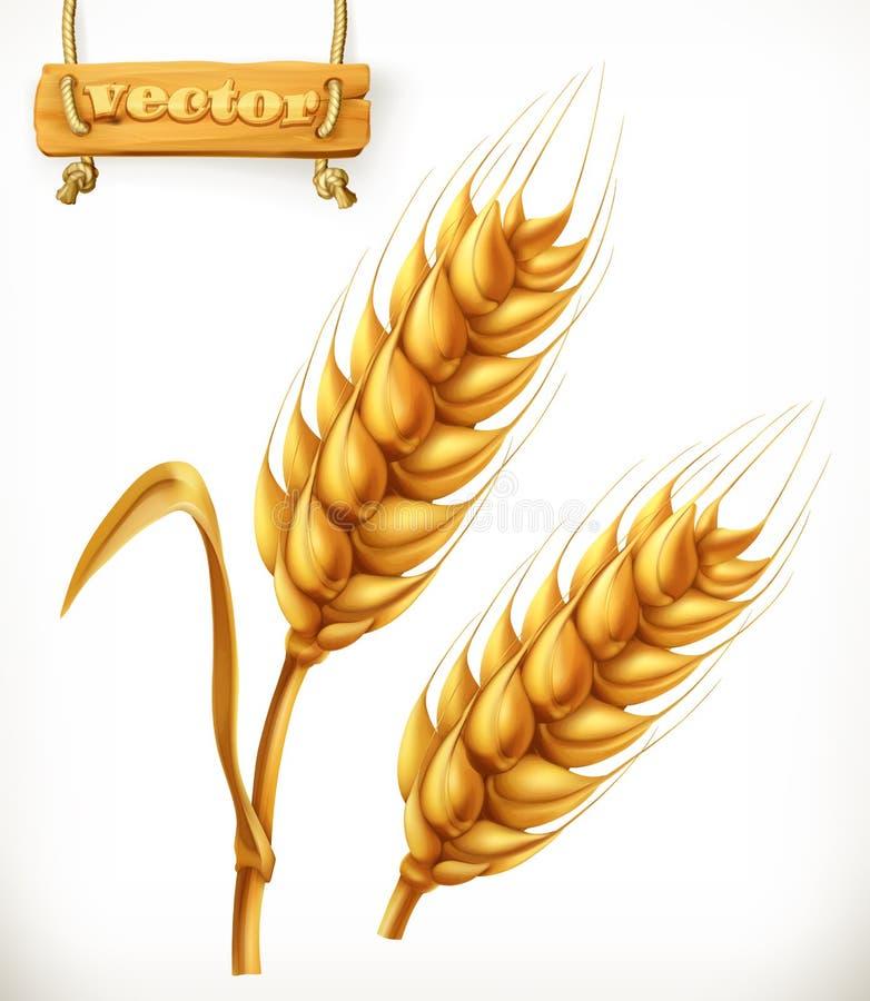 Wheat. vector icon vector illustration