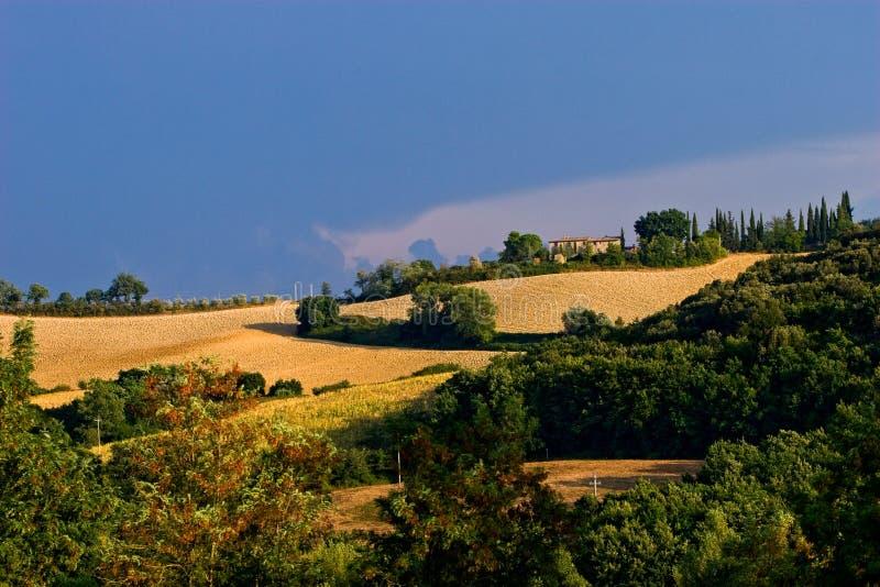 Wheater difettoso nelle colline di toscane immagine stock libera da diritti