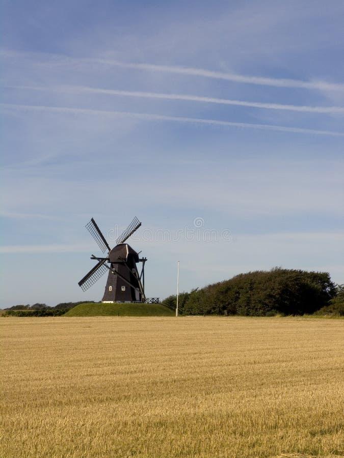 wheatfieldwindmill royaltyfria bilder
