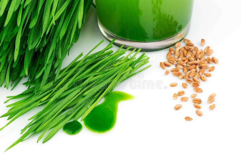Wheatgrass汁液用发芽的麦子和麦子 免版税库存照片