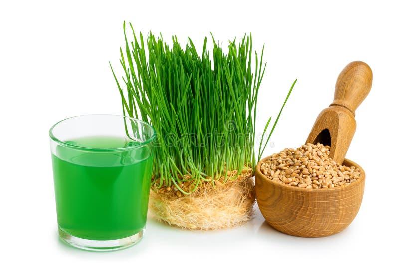 Wheatgrass汁液用在白色背景隔绝的发芽的麦子 免版税库存照片
