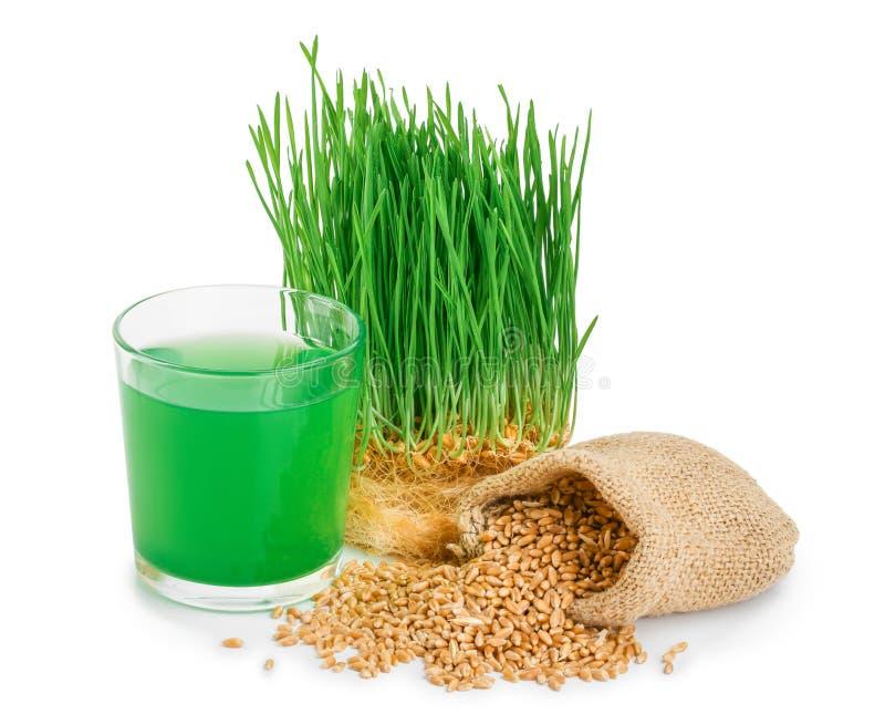 Wheatgrass汁液用在白色背景隔绝的发芽的麦子 库存照片