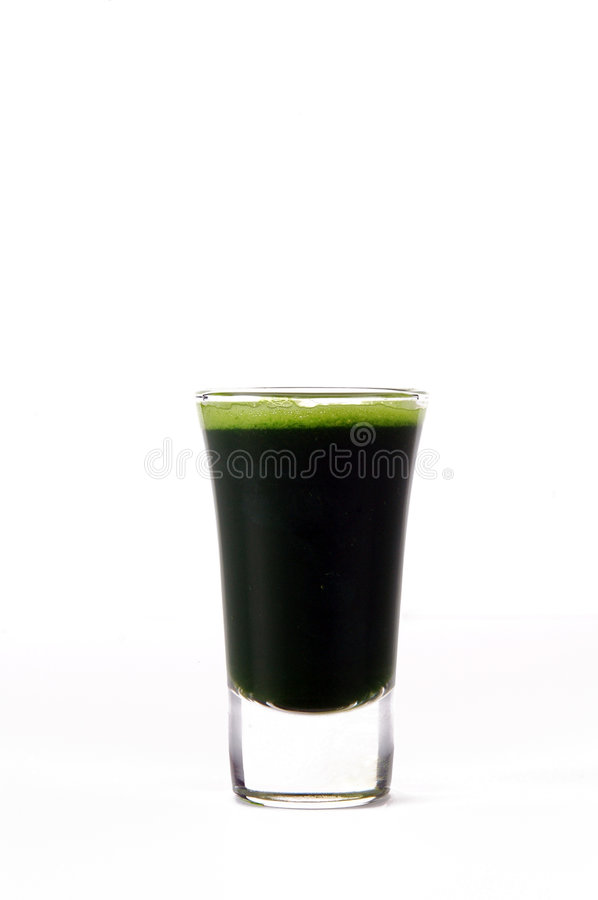 Wheatgrass. A shot of wheatgrass stock image